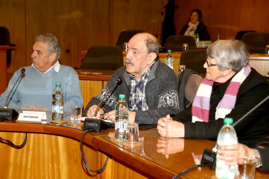 """Baldassari (Onajpu): """"Los derechos fundamentales de jubilados y pensionistas no son contemplados"""""""