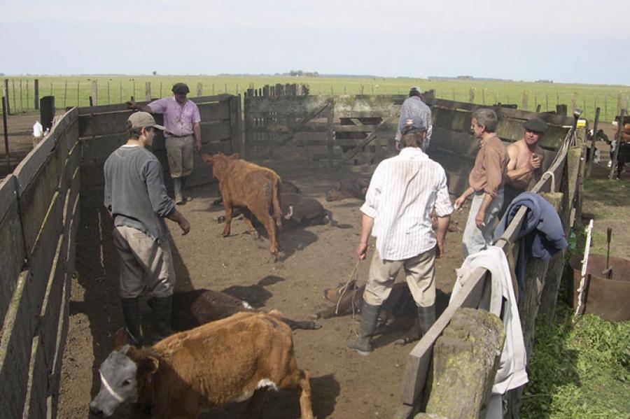 """""""Se trata de dignificar la vida de los trabajadores rurales"""""""